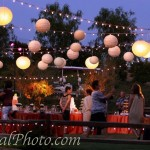 Oak Meadows Lighting Event - 01