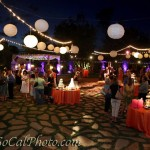 Oak Meadows Lighting Event - 05